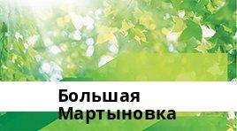 Сбербанк Доп.офис №5221/0910, Большая Мартыновка
